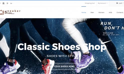 www.sneakergodz.com.au